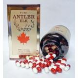 Deer Antler - 200 Caps